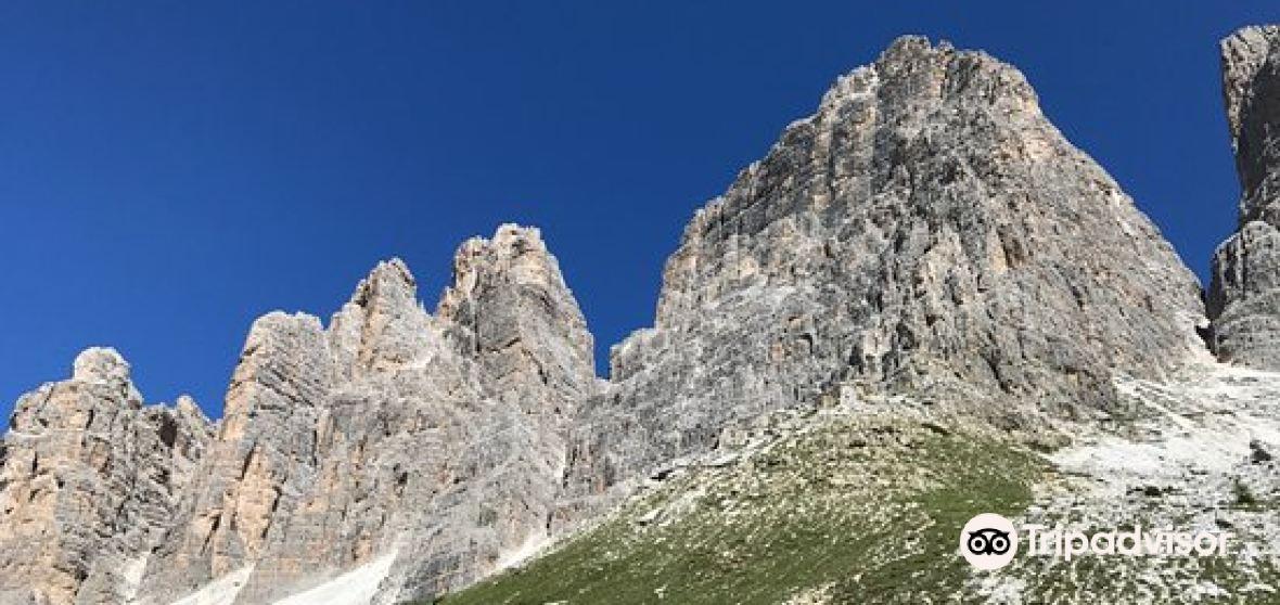 Province of Belluno