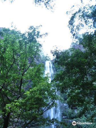 Wli Waterfalls1