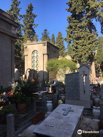 巴勒莫嘉布遺修院地下墓室2