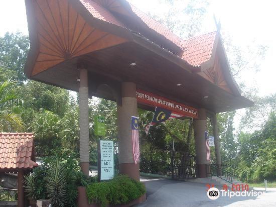 Ukay Perdana, 68000 Ampang, Selangor4