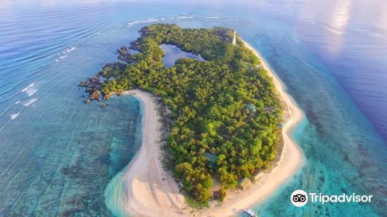 Apo Reef Natural Park1