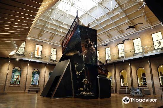 Tasmanian Museum & Art Gallery4