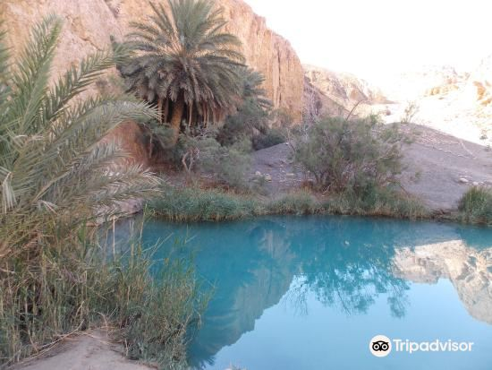 Sahara Desert3