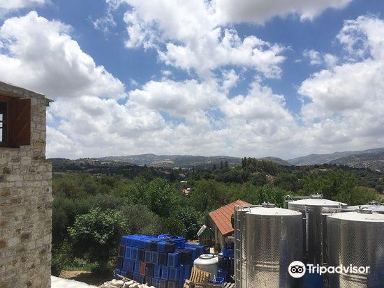 Tsangarides Winery1