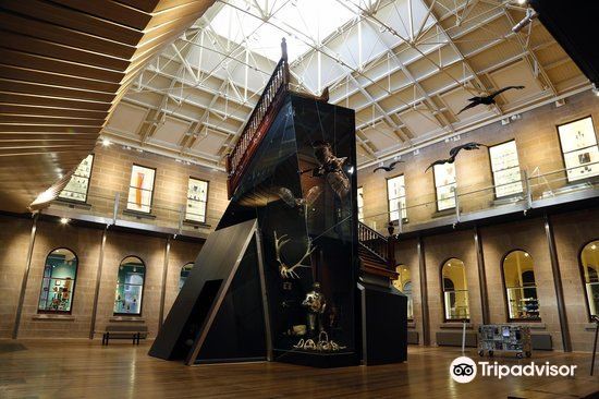 Tasmanian Museum & Art Gallery3