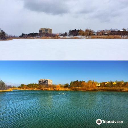 Lake Aquitaine Park1
