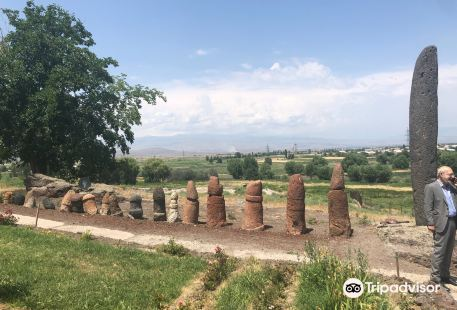 Metsamor Historical-Archaeological Museum-Reserve