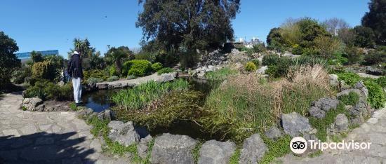 Southsea Rock Gardens4