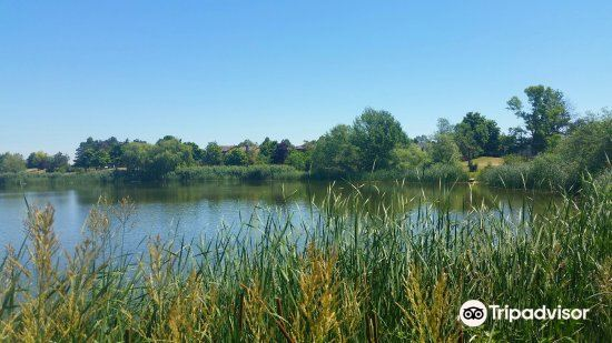 Lake Aquitaine Park4