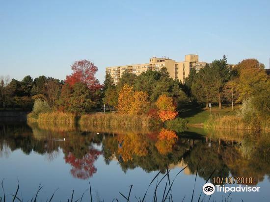 Lake Aquitaine Park2