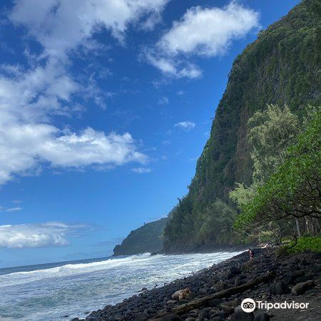 Waipio Valley Lookout1
