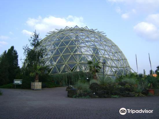 Botanical Garden2