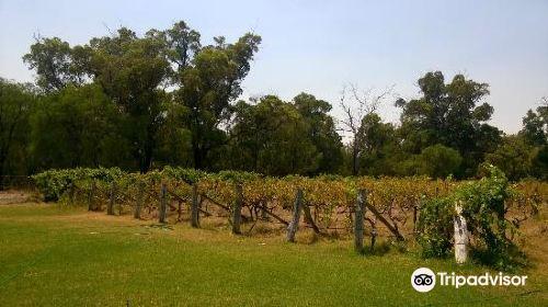 Cape Bouvard Winery