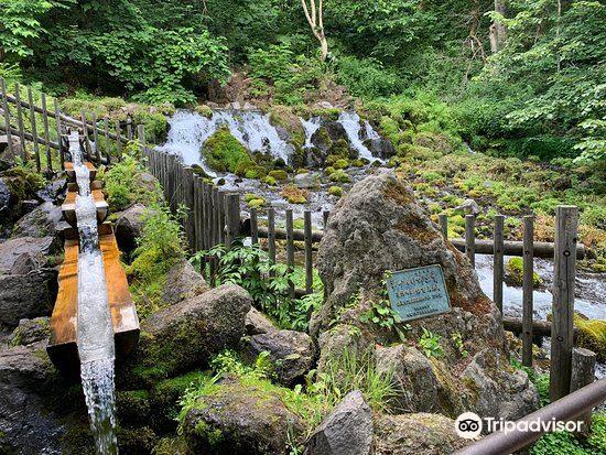 Kyogoku Spring Water Village2