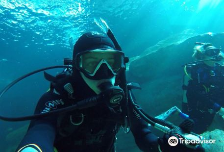 TODI - The Ultimate Diving Experience