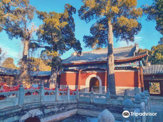 Biyun Temple4
