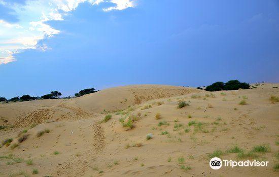 薩姆沙丘4