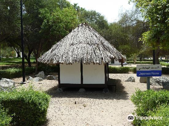 Mushrif Park3