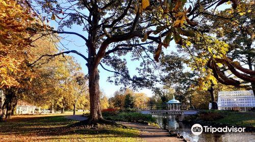 Pearson Park