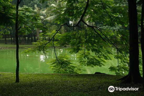 Botanical Gardens (Vuon Bach Thao)1