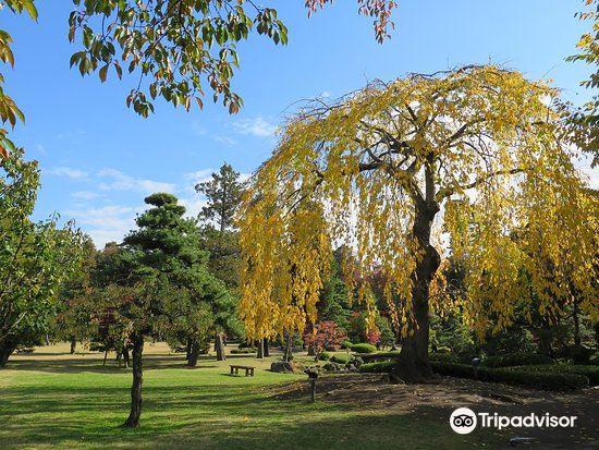 Fujita Memorial Japanese Garden1