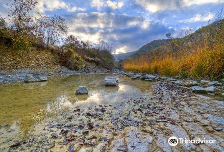 Dragonja River