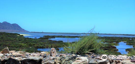 Playa San Miguel2