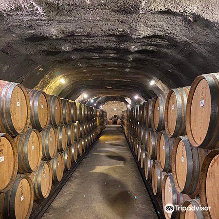 Gibbston Valley Winery1