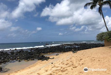 Baby Beach Poipu