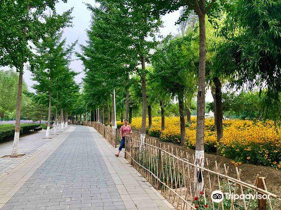Jingdong Laoquan Country Park3