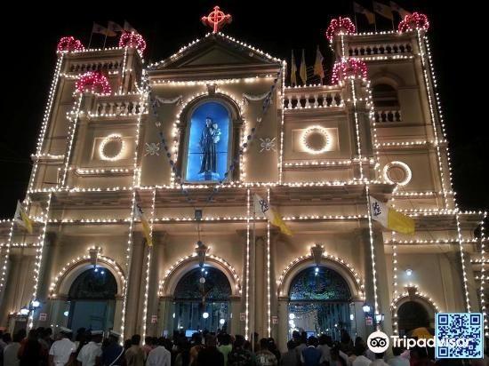 St. Anthony's Shrine4