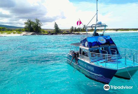 Aquatic Life Divers