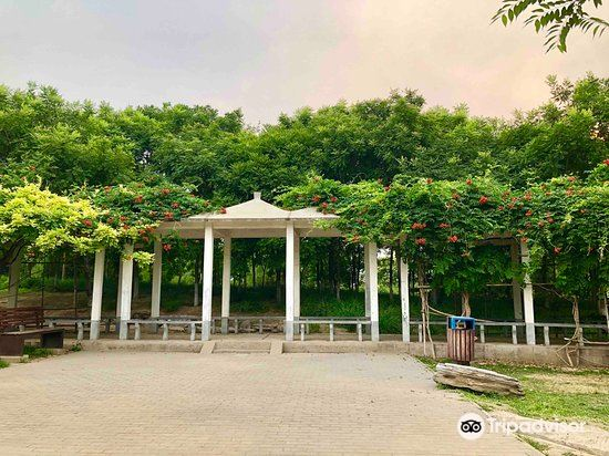 Jingdong Laoquan Country Park4
