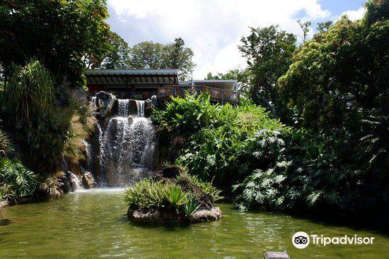 Jardin Botanique de Deshaies1
