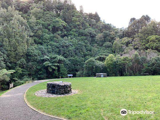 Otari-Wilton's Bush4