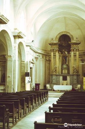 Catedral de la Purísima Concepción1