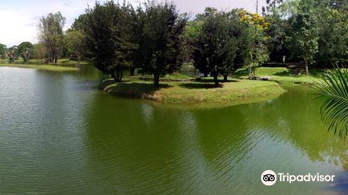 Taman Lake View