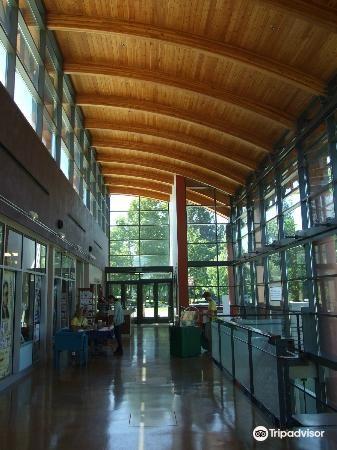 Northwest Museum of Arts & Culture1