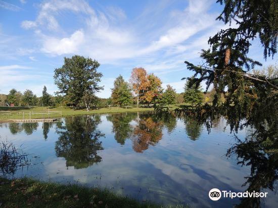 Hudson Springs Park2