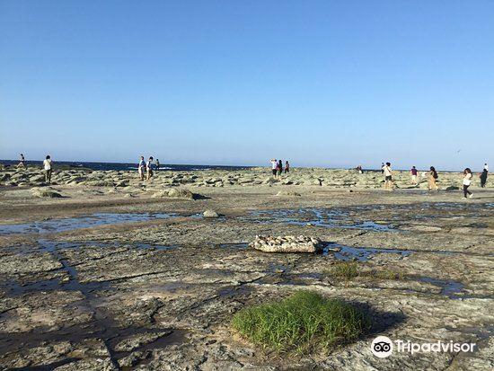 Senjyojiki Beach1