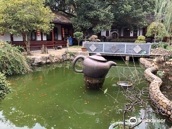龍井茶田4
