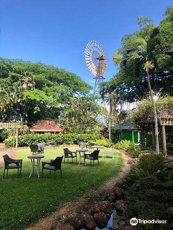 Maui Tropical Plantation2