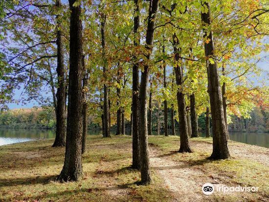 Hudson Springs Park3
