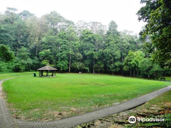 Bukit Batok Nature Park3