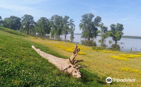 密西西比河岸綠化帶公園