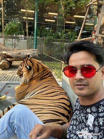 Tiger Park Pattaya4