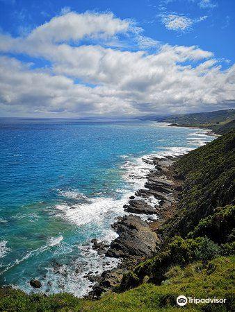 Cape Patton Lookout2