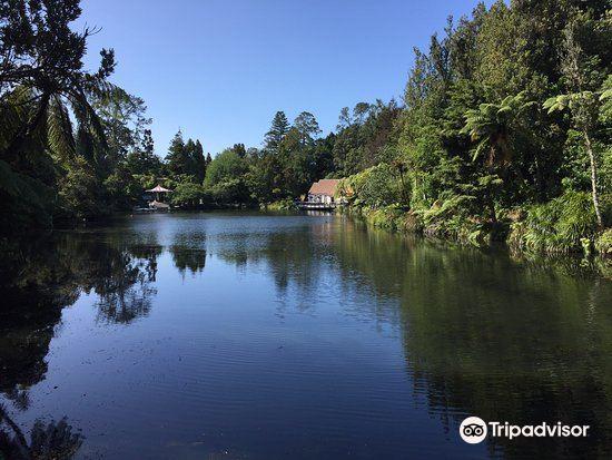 Pukekura Park3