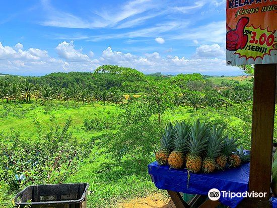 Selangor Fruits Valley2