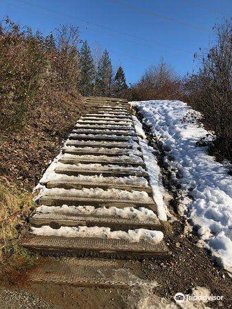 Coquitlam Crunch Trail